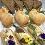 Luxe belegde broodjes lunch verzorging Catering van 't Hooge